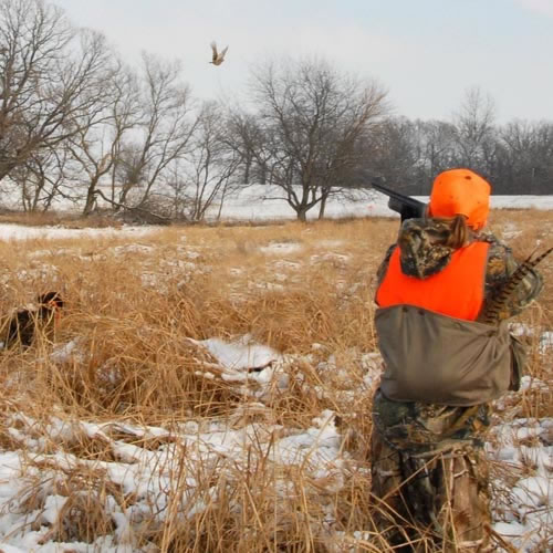 kid pheasant hunting kids hunting foundation